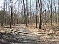 Mikolow, Poland - panoramio (173).jpg