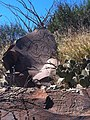 Mina, N.L., Mexico - panoramio (1).jpg