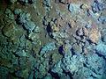 Minerals sediments.jpg