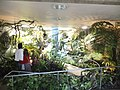Miracle Planet Museum of Plants in 2013-4-27 No,23.JPG