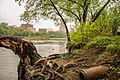 Mississippi River (15805934881).jpg