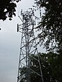 Mobile phone radio mast, near Farnham Common - geograph.org.uk - 21289.jpg
