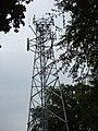 Mobile phone radio mast, near Farnham Common - geograph.org.uk - 21289.jpg