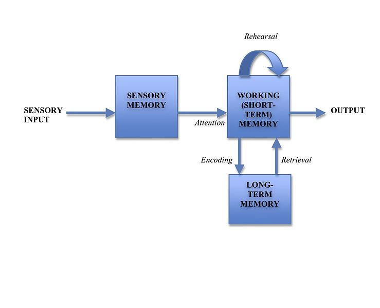 psychology memory formation False memories, psychology of a false memory is a mental experience that is mis- formation, and agreement with the reports of others about the event (c.