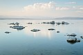 Mono Lake Old Marina August 2013 004.jpg