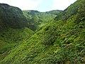 Montagne Pelée - panoramio (5).jpg