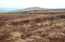 Moorland with abandoned peat workings - geograph.org.uk - 1301973.jpg