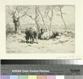 Moutons (NYPL b14923834-1226071).tiff