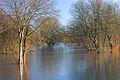 Muldehochwasser k1.jpg