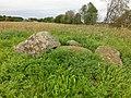 Nästegårdens gånggrift (RAÄ-nr Falköpings västra 2-1) 1200.jpg