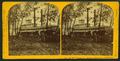 N.W.U. Packet Co., steamer Milwaukee, wooding up, by Martin's Art Gallery.png