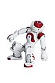 NAO Robot .jpg