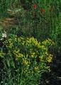 NRCSCO01024 - Colorado (1439)(NRCS Photo Gallery).tif