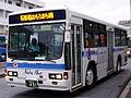 Naha-Bus-LV.JPG