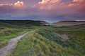 Nationaal Park Zuid-Kennemerland (26).jpg