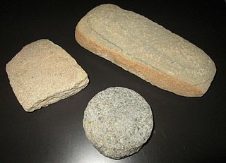 Mano (stone) hand-held stone tool used with a metate or quern to process or grind food by hand
