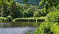 Naturpark Pfälzerwald Kropsbachweiher 005 2016 07 27.jpg