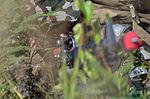Nepalese Rangers attend US Army Leadership School 150811-F-LX370-299.jpg