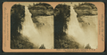 Nevada Falls, (700 feet), Yosemite, California, from Robert N. Dennis collection of stereoscopic views.png