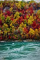 Niagara Falls, ON, Canada - panoramio (109).jpg