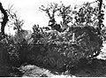 Niemieckie działo szturmowe na stanowisku na froncie włoskim (2-2291).jpg