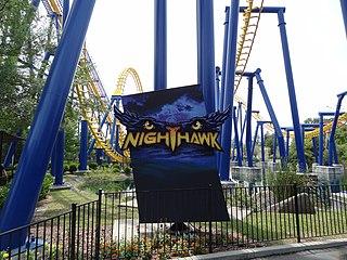 Nighthawk (roller coaster) Steel roller coaster