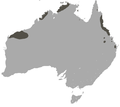 Northern Quoll area.png