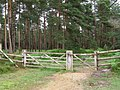 Northwest gateway to Alderhill Inclosure, New Forest - geograph.org.uk - 477333.jpg