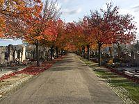 Nouveau cimetière de la Croix-Rousse - nov 2016 (43).JPG