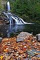 Nova Scotia DSC 0512 - Butcher Mill Falls (2960493089).jpg