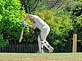 Nuthurst CC v. Henfield CC at Mannings Heath, West Sussex, England 063.jpg