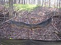 Off-Site Septic Systems (23) (5097134011).jpg