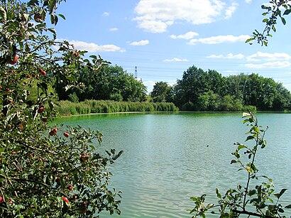 Jak do Olšanský Rybník hromadnou dopravou - O místě