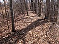 Old-stone-fort-tennessee-south-wall.jpg
