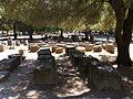 Olympia, Greece45.jpg