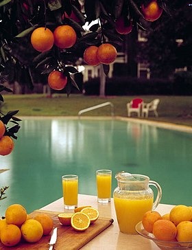Orange juice-State beverage of Florida.jpg
