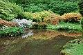 Ornamental Pond Lydney Park Gardens - geograph.org.uk - 1318829.jpg