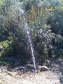 Oued.zitoun.3.4.jpg