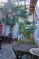Outdoor café in Lindos, Rhodes 2.jpg