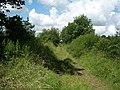 Overgrown drove near Totnell Corner - geograph.org.uk - 489865.jpg