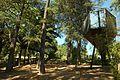 Overlooking forest, landscape (29450222135).jpg