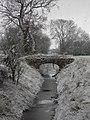 Ox Pasture drain, Harby, Notts. - geograph.org.uk - 42536.jpg