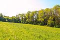 Přírodní památka Hrobka 09.jpg