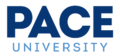 Pace University Logo 2021.png