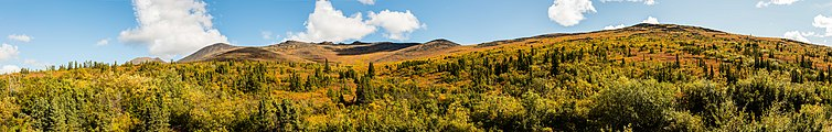 Paisaje en el Sureste de Fairbanks, Alaska, Estados Unidos, 2017-08-28, DD 110-118 PAN.jpg