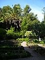 Parc du Mugel La Ciotat Provence 536.JPG