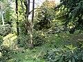 Parco della Villa Pallavicino - Stresa - DSC03044.JPG