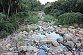 Pebbels - panoramio - sabareesh kkanan sub….jpg