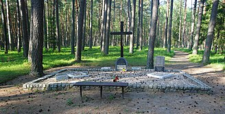 Piaśnica Forest - Mass grave 02.jpg