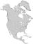 Picea martinezii range map 0.png